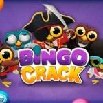 Bingo Crack para Android