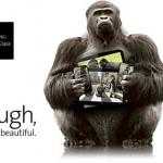Cómo saber si tú Smartphone lleva Gorilla Glass en su pantalla